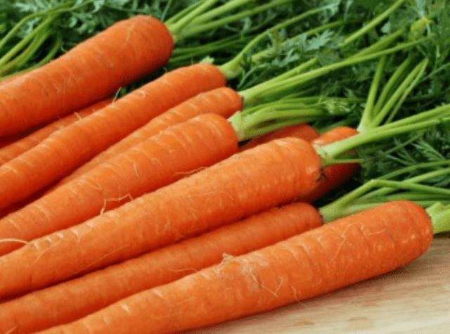 Посів, вирощування та збереження моркви