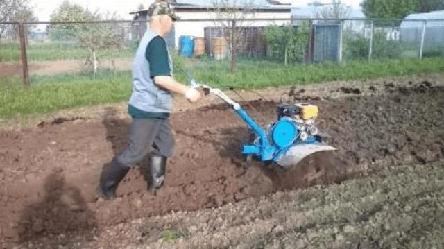 Посадка картоплі мотоблоком