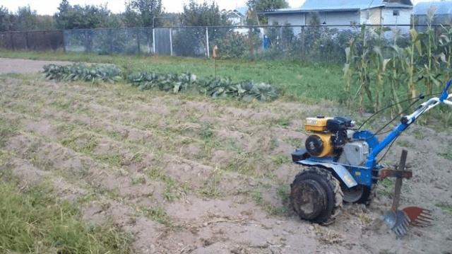 Посадка картоплі мотоблоком відео