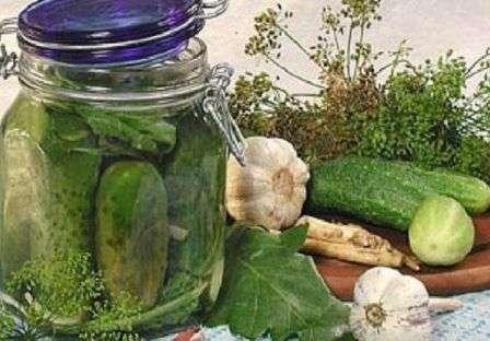 Приготування малосольних огірків