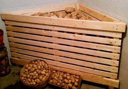 Як зберігати картоплю в погребі, подвалі, ящику