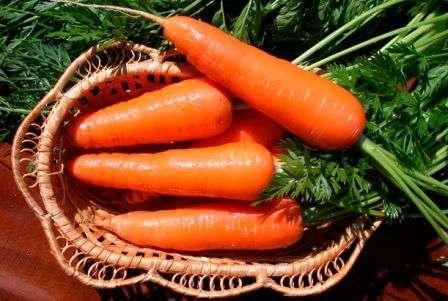 Способи зберігання моркви в погребі на зиму