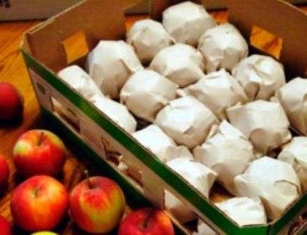 Кожен фрукт загортаємо в папір