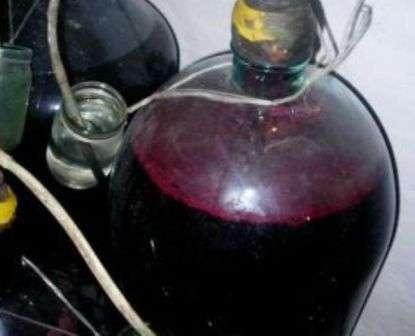 Як приготувати домашнє вино з винограду Ізабелла