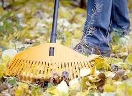 Підготовка саду до зими-відео:як підготувати до зими сад