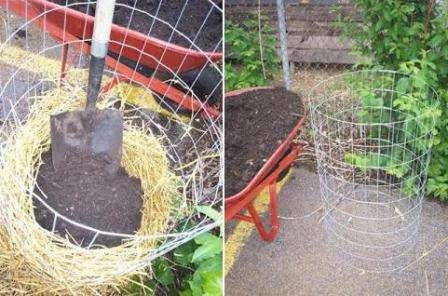 Як виготовити вежу для вирощування картоплі