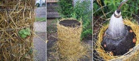 Вирощування картоплі в мішках, бочках