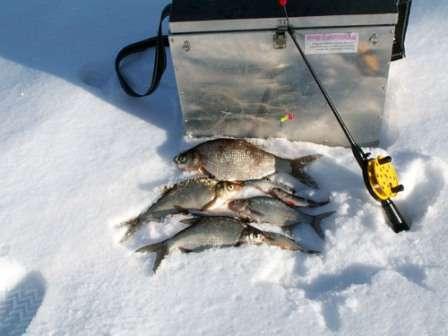 зимова рибалка фото