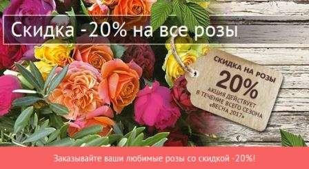 купити рози зі знижкою