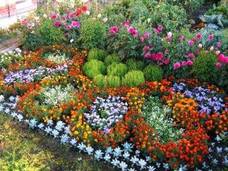 Квіткові клумби - схеми та фото клумб