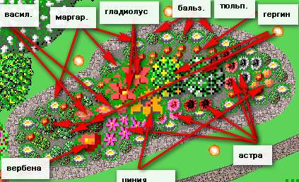 Які квіти садити в клумбу
