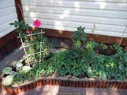 Дерев'яна огорожа для клумб та квітників