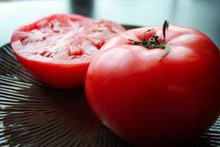 Факти та відгуки про томат Катя: агротехніка, врожайність, застосування