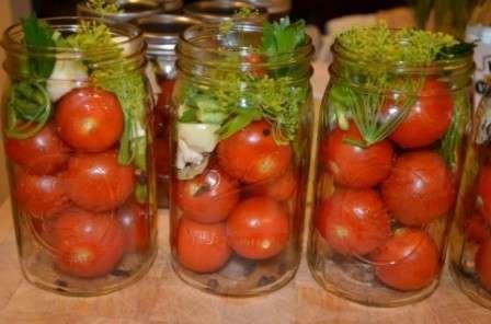 квашені помідори з гірчичним порошком