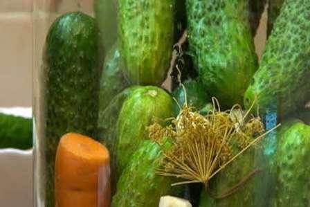 Огірки з горілкою без стерилізації