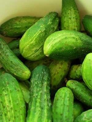Як приготувати огірки з горілкою на зиму