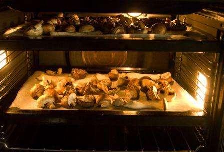 Сушка грибів в духовці