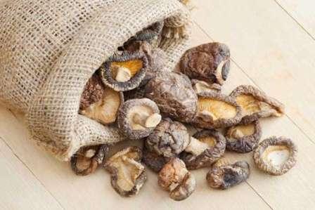 Зберігання грибів в полотняних мішках