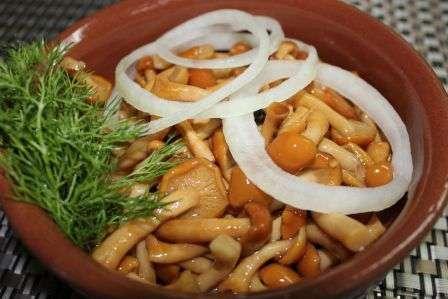 Рецепт приготування маринованих опеньків