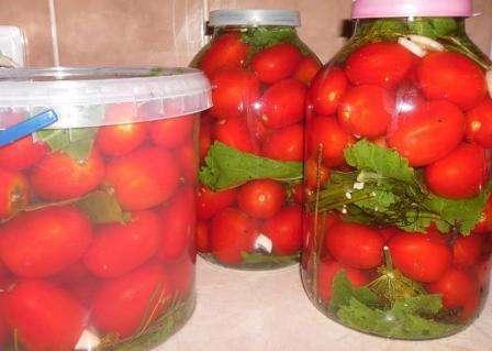 Як зробити квашені помідори в домашніх умовах