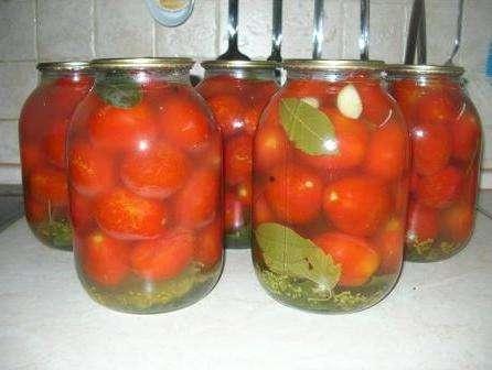 Квашені помідори в банках рецепт приготування на зиму