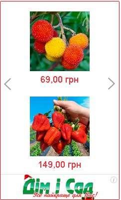 купити насіння в україні