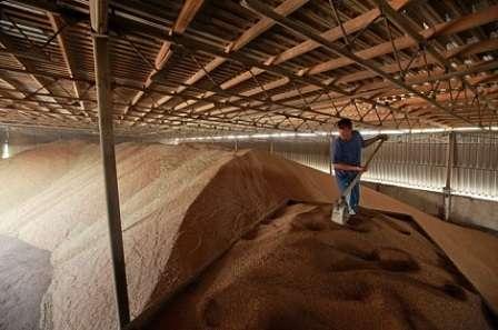 Елеватор для зберігання зерна