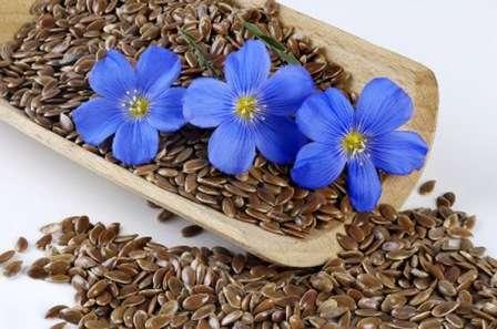 Застосування лляного насіння для схудення