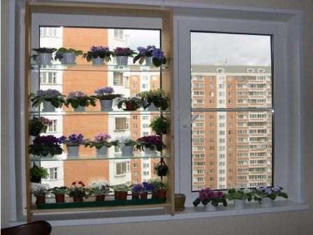 Стелаж облаштований на вікні.