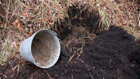 дренажний шар для посадки сосни