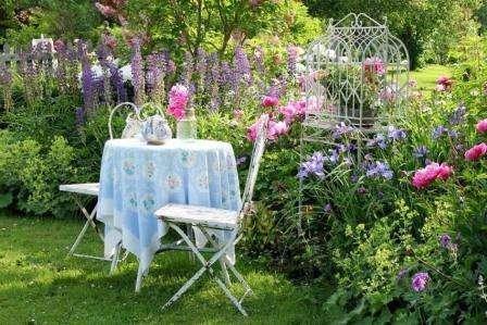 Каталог багаторічних квітів для дачі: фото
