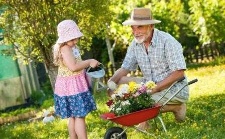 Полив - обов'язкова складова догляду за дачними рослинами