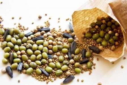 Як правильно підготувати насіння до сівби