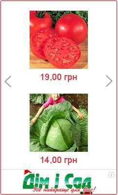 купити насіння капусти, помідорів