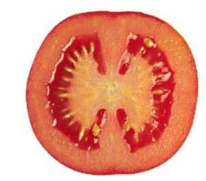 Що потрібно знати про низькорослі помідори