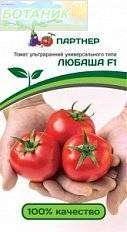 Плоди томатів Любаша: