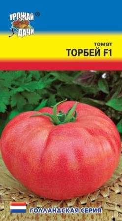 Томат Торбей