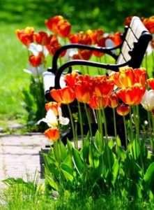 садова лавка своїми руками