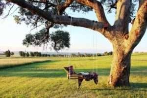 Гойдалки, підвішені на дерево