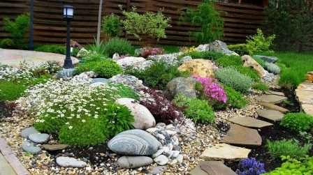 Різноманітні камені і рослини створюють відчуття непідробної природної краси у дворі
