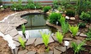 Рівень води в садовому ставку