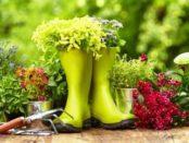 Клумби та квітники своїми руками
