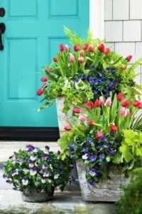 Квітник перед входом в будинок