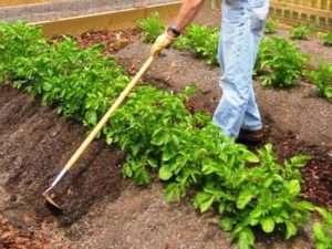 Методи удобрення ґрунту