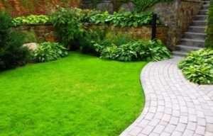 трав'яний килим
