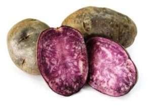Сорт кольорової картоплі Екзотик