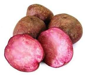 сорт картоплі Український красномякотний