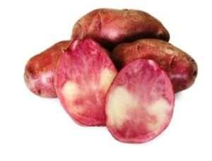 Ранній сорт кольорової картоплі Малинівка