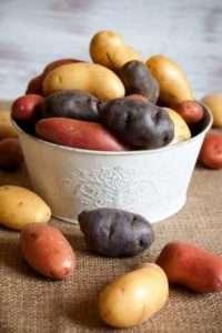 особливості вирощування кольорової картоплі