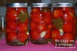 Рецепти помідорів без оцту